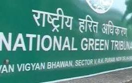 NGT की फटकार – दिल्ली सरकार दिखाए वो चिट्ठी जिसमें मिला ऑड-ईवन का आदेश