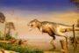 एस्ट्रोइड की टक्कर के पहले से ही धरती से लुप्त हो गए डायनासोर