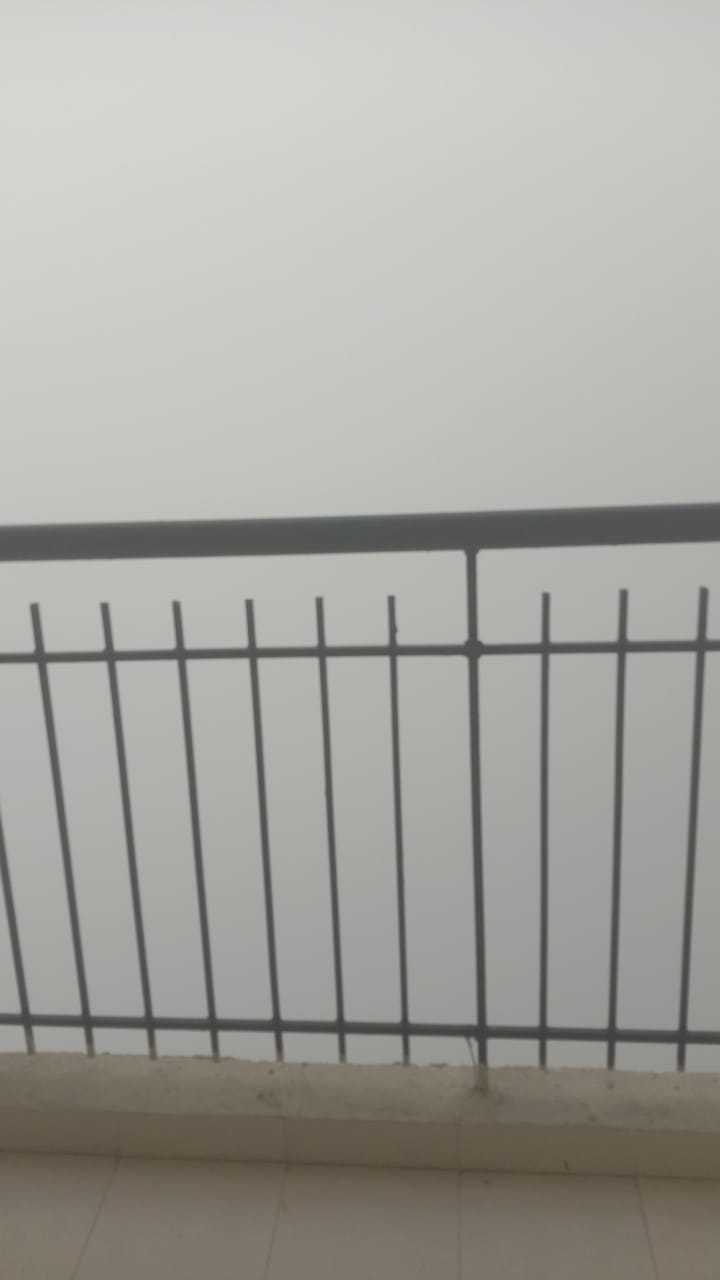 IMG-20210101-WA0019.jpg